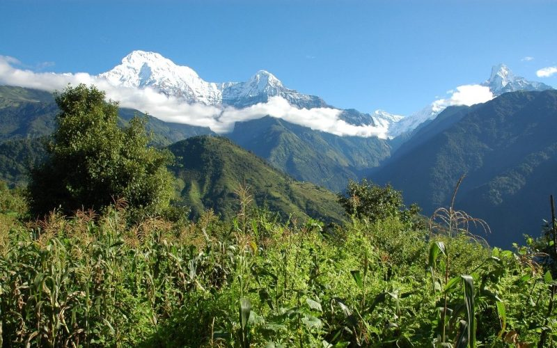 Poon Hill trek for senior citizens